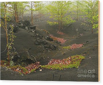 Volcanic Scenery Wood Print by Bernard MICHEL