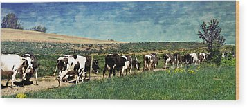 Waiting In Line Wood Print by Kathy Jennings