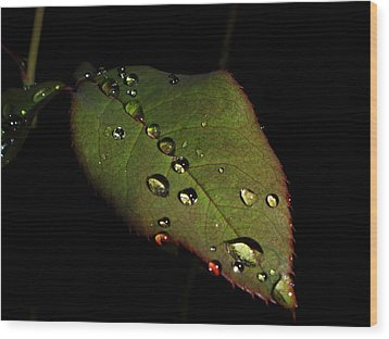 Watered-leaf Wood Print by Rosvin Des Bouillons