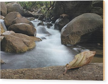 Waterfall Wood Print by Nawarat Namphon