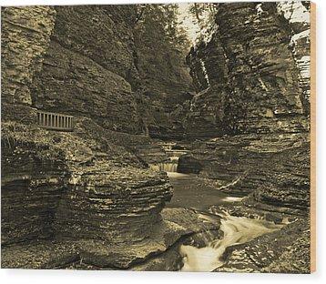 Watkins Glen In Orotone Wood Print by Joshua House