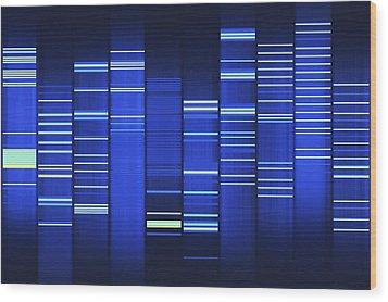 Website Source Code Visualisation Wood Print by Web2dna-baekdal.com