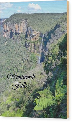 Wentworth Falls Wood Print by Carla Parris