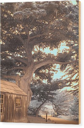 Whaler's Cabin Wood Print by Jane Linders