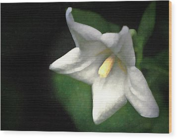 White Balloon Flower-faux Painting Wood Print by  Onyonet  Photo Studios
