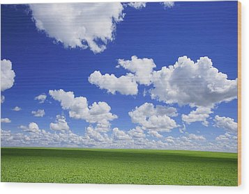 White Clouds In The Sky And Green Meadow Wood Print by Don Hammond