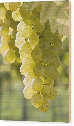White Grapes Wood Print by Michael Interisano