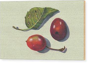 Wild Plums And Leaf Wood Print by Joyce Geleynse