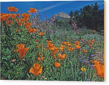 Wildflower Wonderland Wood Print by Kathy Yates