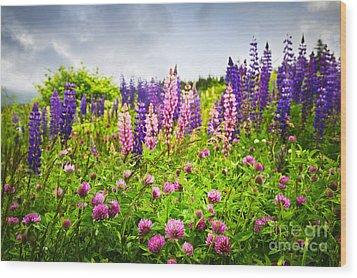 Wildflowers In Newfoundland Wood Print by Elena Elisseeva