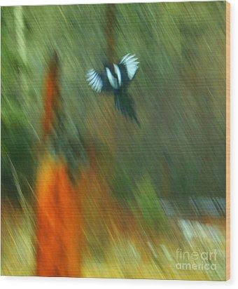 Wings Wood Print by Julie Lueders