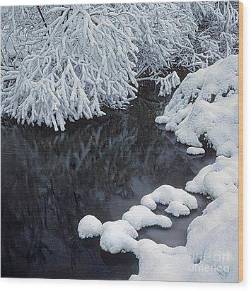 Winter Brook Wood Print by Elena Filatova