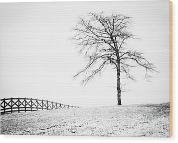 Winter In Black And White Wood Print by David Waldrop