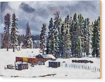 Winter Seclusion Wood Print by Jeff Kolker