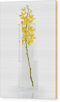 Yellow Orchid In Vase Wood Print by Atiketta Sangasaeng