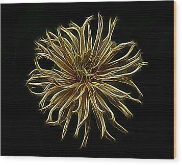 Zinnia  Wood Print by Sandy Keeton