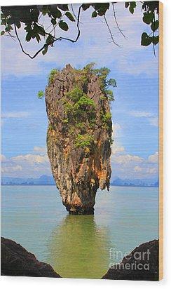 007 Island Wood Print by Mark Ashkenazi