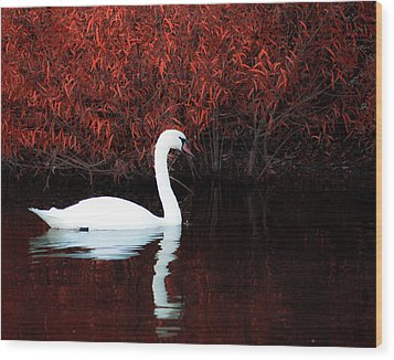 Along The Shores Of Avalon Wood Print by Ron  McGinnis
