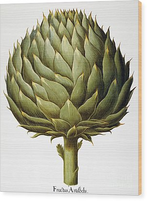 Artichoke, 1613 Wood Print by Granger