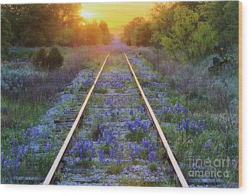 Blue Bonnets On Railroad Tracks Wood Print by Jeremy Woodhouse