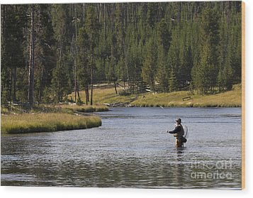 Fly Fishing In The Firehole River Yellowstone Wood Print by Dustin K Ryan