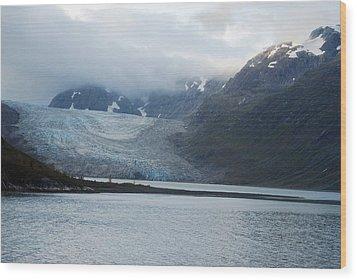John Hopkins Glacier Wood Print by Michael Peychich
