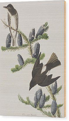 Olive Sided Flycatcher Wood Print by John James Audubon