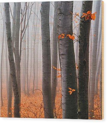 Orange Wood Wood Print by Evgeni Dinev