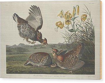 Pinnated Grouse Wood Print by John James Audubon