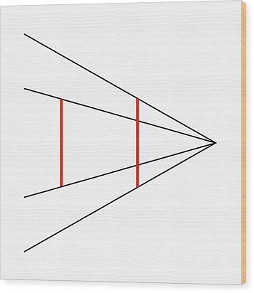 Ponzo's Illusion Wood Print by