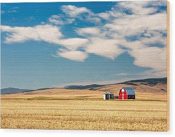 Prairie Red Wood Print by Todd Klassy