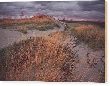 Sleeping Bear Dunes National Lakeshore Wood Print by Melissa Farlow