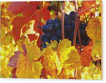 Vineyard 16 Wood Print by Xueling Zou