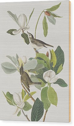 Warbling Flycatcher Wood Print by John James Audubon