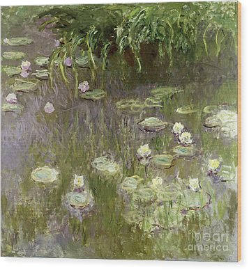 Waterlilies At Midday Wood Print by Claude Monet
