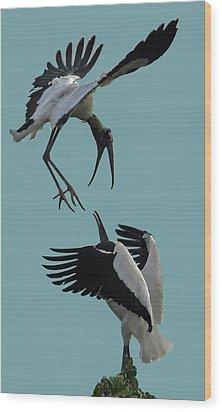 Wood Stork Pair Wood Print by Larry Linton