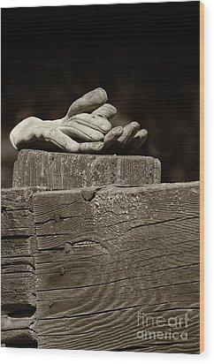 Taking A Break Wood Print by Sandra Bronstein