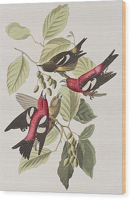 White-winged Crossbill Wood Print by John James Audubon