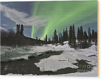 Aurora Borealis Over Creek, Yukon Wood Print by Jonathan Tucker