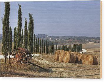 Tuscany Wood Print by Joana Kruse