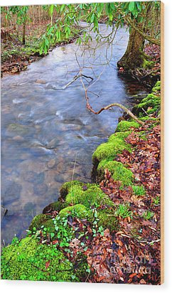 Middle Fork Of Williams River Wood Print by Thomas R Fletcher