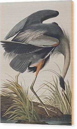 Great Blue Heron Wood Print by John James Audubon