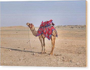 Thar Desert - India Wood Print by Joana Kruse
