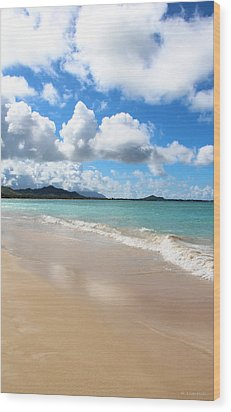 A Beautiful Day At Kailua Beach Hawaii Wood Print by Kerri Ligatich
