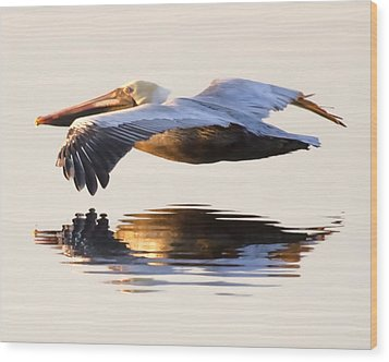 A Closer Look Wood Print by Janet Fikar