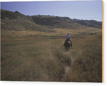 A Cowboy Looks For His Herd Wood Print by Taylor S. Kennedy