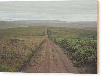 A Dirt Road Leading To The Horizon Wood Print by Bill Curtsinger