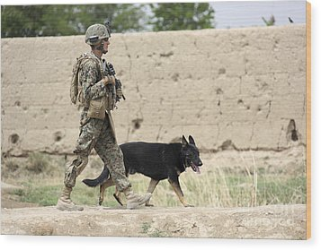 A Dog Handler Of The U.s. Marine Corps Wood Print by Stocktrek Images