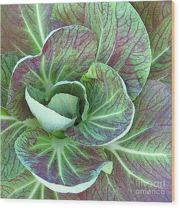 A Floral I Wood Print by Gary Everson
