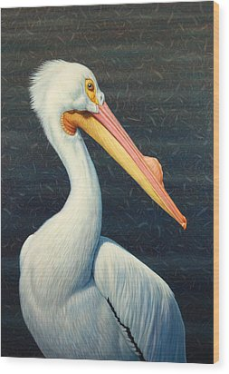 A Great White American Pelican Wood Print by James W Johnson
